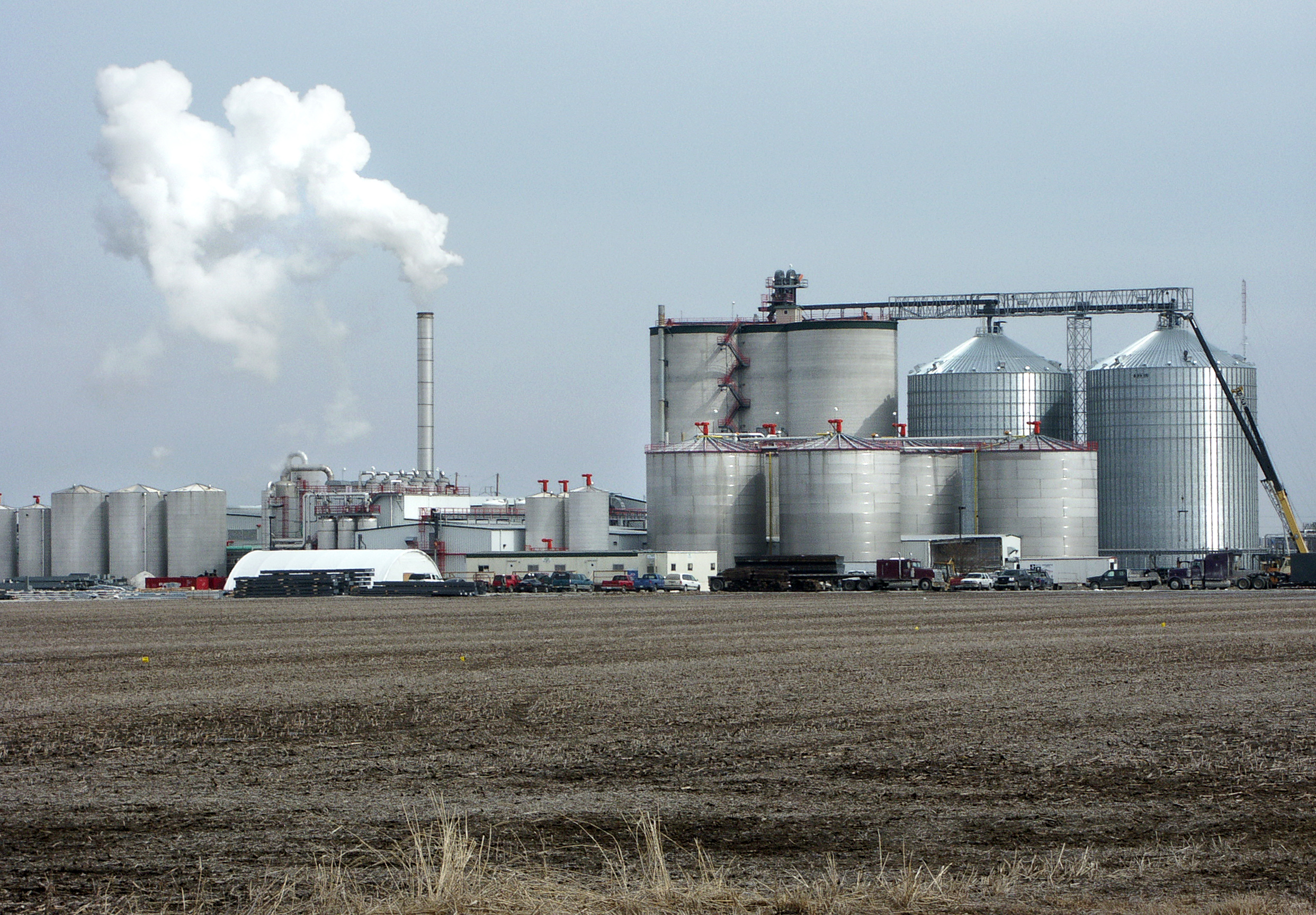 Biofuels Decision May Signal Big Oil's Influence in White House